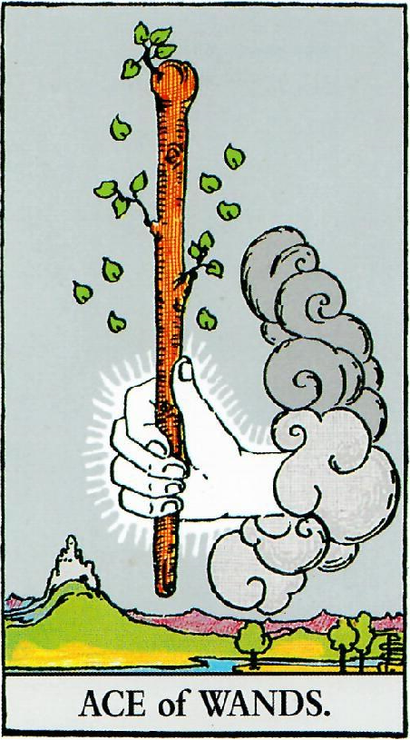 קלף אס המטות בקלפים של ריידר